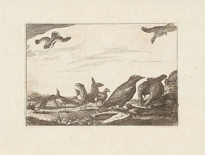 Pheasant Drawing - Crow And Pheasants, Francis Barlow, Pieter Schenk by Francis Barlow And Pieter Schenk I
