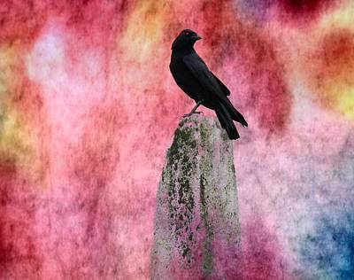 Ties Mixed Media - Crow In Colors by Gothicrow Images