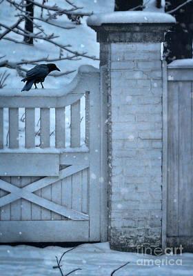Crow On Snowy Gate Art Print by Jill Battaglia