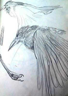 Wings Of A Bird Painting - Crow Pencil Study by Trudi Doyle