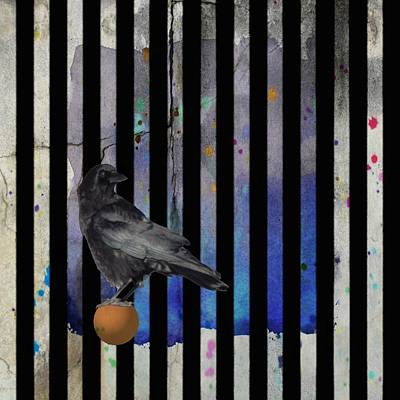 Blackbird Mixed Media - Crow Stripes by Gothicrow Images