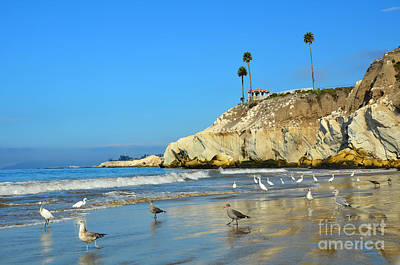 Photograph - Crowded Beach by Debra Thompson