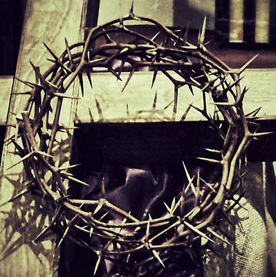 Photograph - Crown Of Thorns by Patricia Januszkiewicz