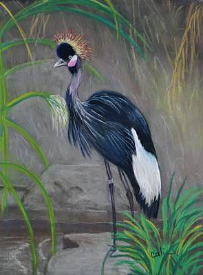 Painting - Crowned Crane by Calliope Thomas