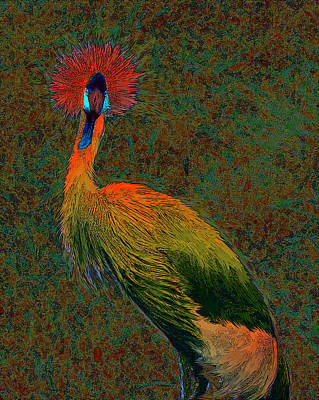 Digital Art - Crowned Crane by Jane Schnetlage