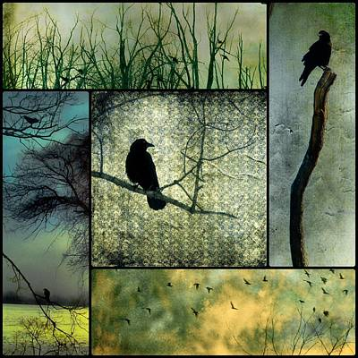 Crows In Nature Collage Art Print