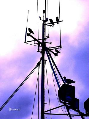 Photograph - Crows Nest Literally by Sadie Reneau