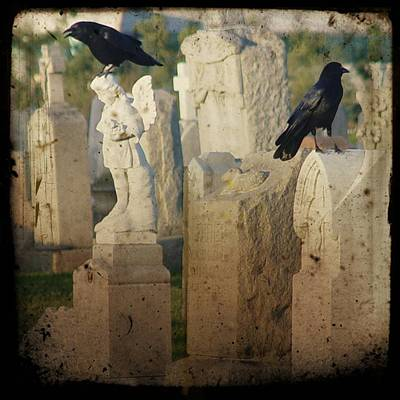 Crows On Tombstones Print by Gothicrow Images