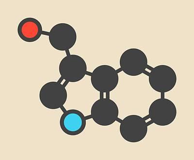 Cruciferous Vegetable Molecule Art Print