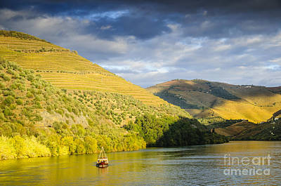 Winery Photograph - Cruising Down The River by Oscar Gutierrez