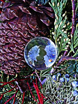 Pine Cones Photograph - Crystal Ball Project 67 by Sarah Loft