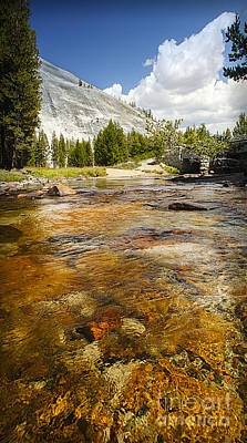 Photograph - Crystal Clear Tuolumne Meadows Mountain Tranquil Stream Yosemite National Park California  by Jerry Cowart