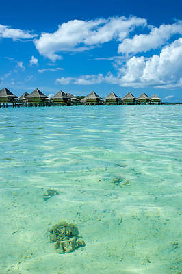 Photograph - Crystal Clear View At Bora Bora by Gary Slawsky