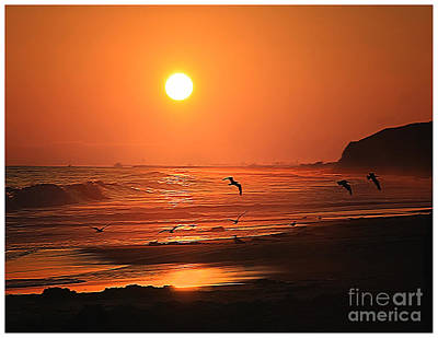 Photograph - Crystal Cove Sunset by Tom Griffithe