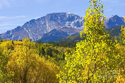 Steve Krull Royalty-Free and Rights-Managed Images - Crystal Creek Autumn by Steve Krull