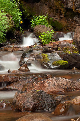 Photograph - Crystal Creek Headwaters  by Eric Rundle