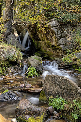 Photograph - Crystal Creek Waterfall  by Eric Rundle