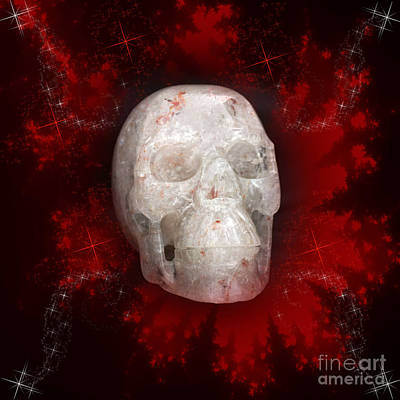 Photograph - Crystal Skull On Red by Terri Waters
