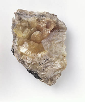 Crystalline Brucite In Groundmass Art Print by Dorling Kindersley/uig