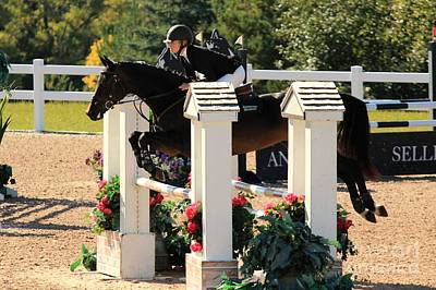 Olympic Sports - Csjt-jumper46 by Janice Byer