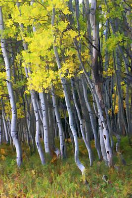 Photograph - Crested Butte Aspen Grove by Allen Beatty