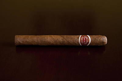 Winter Animals Rights Managed Images - Cuban Cigar Royalty-Free Image by Jennifer Hogan