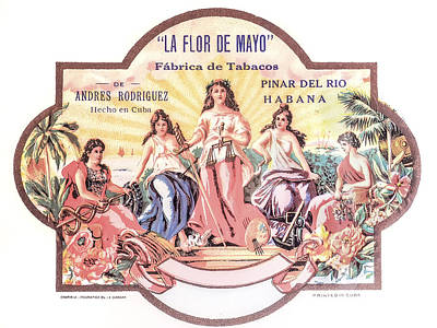 Photograph - Cuban La Flor De Mayo Cigars Image Art by Jo Ann Tomaselli