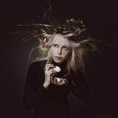 Photograph - Cuculus by Natalia Drepina