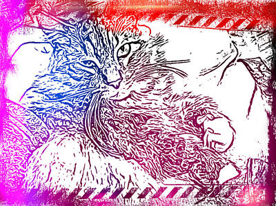 Mixed Media - Cuddly Maine Coon Cat by Julie Knapp