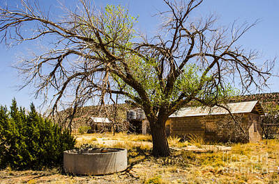 Photograph - Cuervo New Mexico Ghost Town 11 by Deborah Smolinske