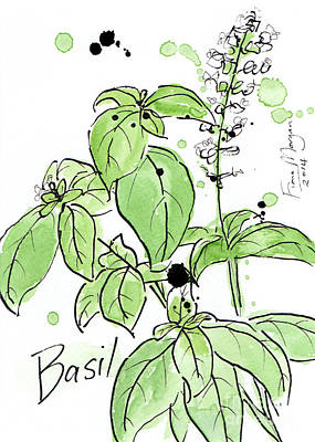 Mindfulness Painting - Culinary Herbs - Basil by Fiona Morgan