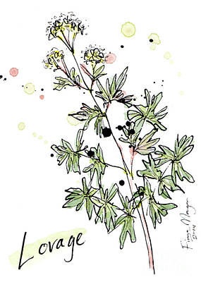 Menu Illustrations Painting - Culinary Herbs - Lovage by Fiona Morgan