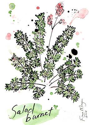 Menu Illustrations Painting - Culinary Herbs - Salad Burnet by Fiona Morgan