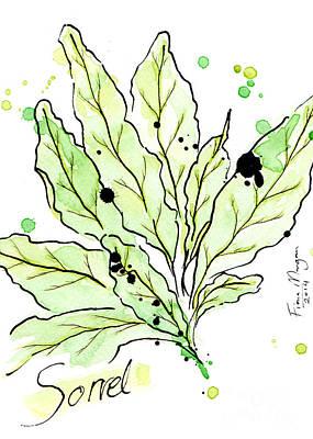 Menu Illustrations Painting - Culinary Herbs - Sorrel by Fiona Morgan