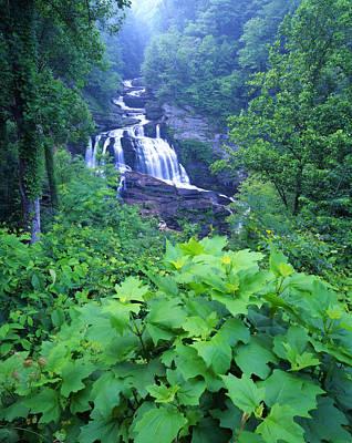 Photograph - Cullasaja Falls by Ray Mathis