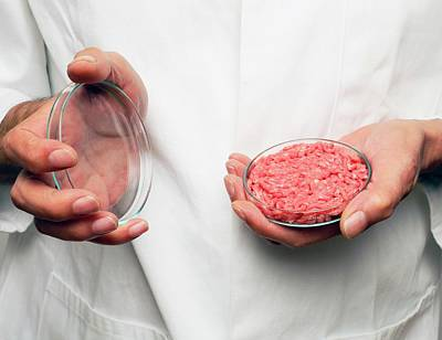 Cultured Meat Product Art Print by Victor De Schwanberg