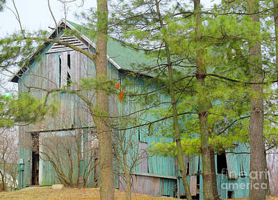 Culver Barn And Evergreen Print by Tina M Wenger