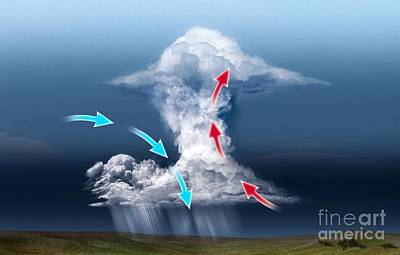 Cumulus Thundercloud, Diagram Art Print by Claus Lunau