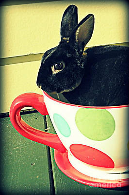 Cup O' Rabbit Art Print by Valerie Reeves