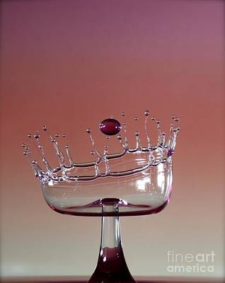 High Speed Photograph - Cup Of Life by Heidi Southworth
