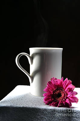Photograph - Cup Of Love by Randi Grace Nilsberg