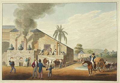 Slaves Photograph - Curing-house And Stills by British Library