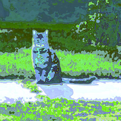 Fuzzy Digital Art - Curiosity And The Cat by Tom Druin