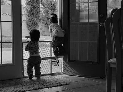 Photograph - Curiosity by Guillermo Rodriguez