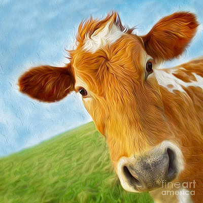 Photograph - Curious Cow by Jo Collins