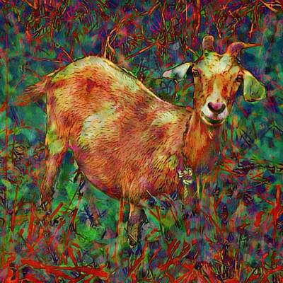 Painting - Curious Goat In Vivid Foliage - Square by Lyn Voytershark