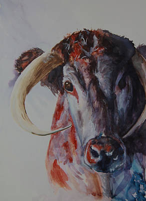 Steer Painting - Curious by Paula Lay