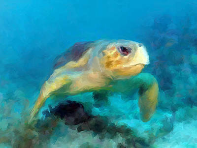 Mixed Media - Curious Sea Turtle by David  Van Hulst