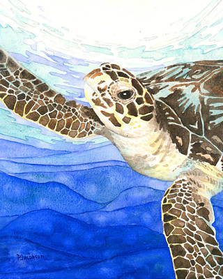 Curious Sea Turtle Art Print