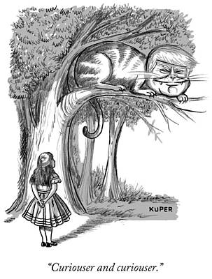 Cheshire Cat Drawing - Curiouser And Curiouser by Peter Kuper